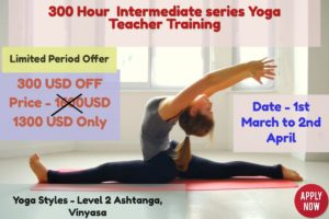 300 Hour yoga teacher training rishikesh india